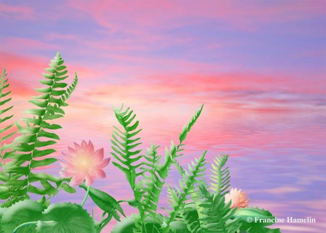 Fleurs d'aurore.jpg